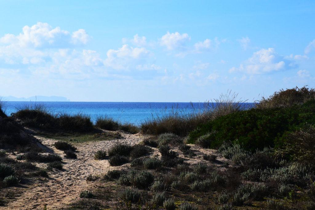 schönsten Strände auf Mallorca